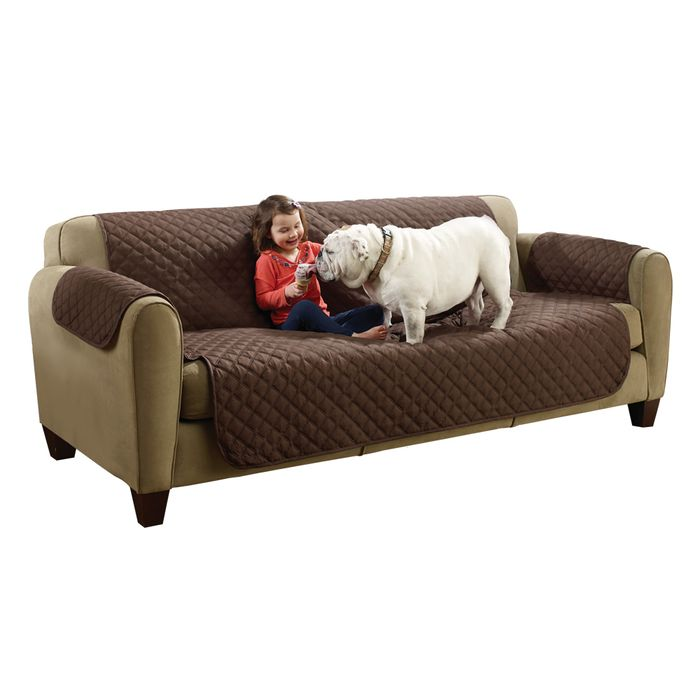 Couch-Coat-x3