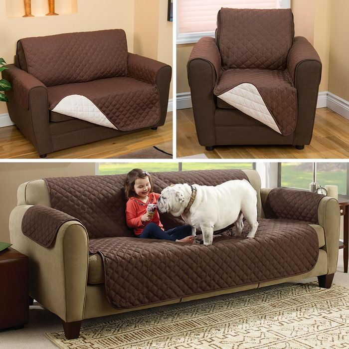 Couch-Coat-x3--2