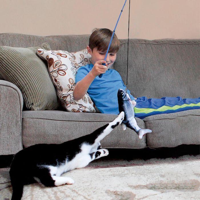 Flippity-Fish-Cat-Toy--2-